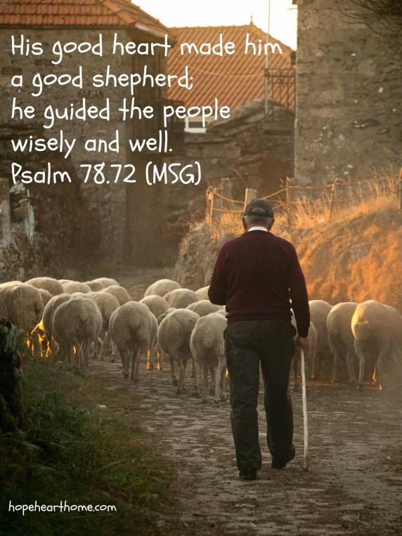 PSALM 78_72 Shepherd