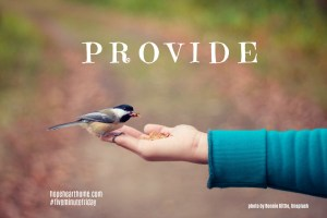 Five Minute Friday: PROVIDE