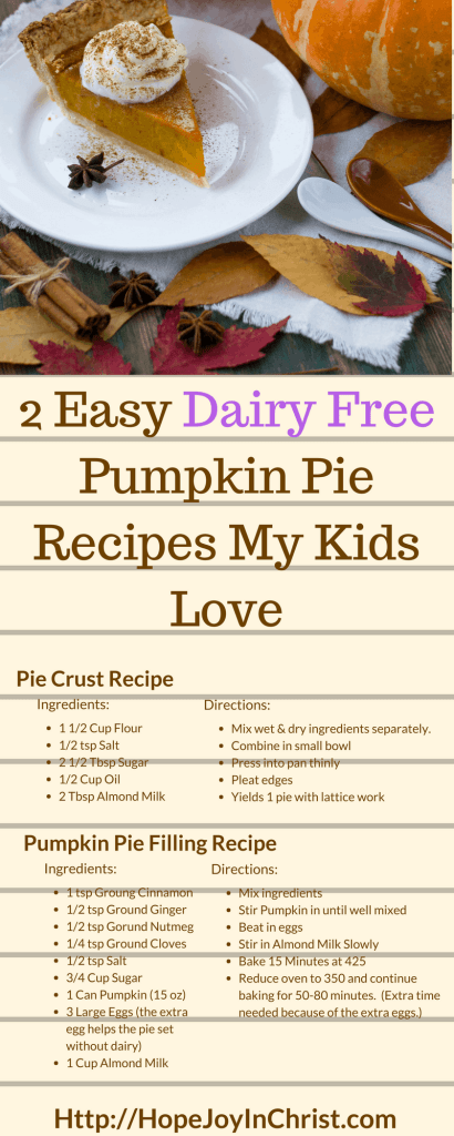 Dairy Free Pumpkin Pie Recipes My Kids Love (#holidaRecipes #EasyPumpkinPie #DairyAllergy)