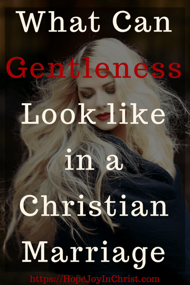 What Can Gentleness Look like in a Christian Marriage PinIt (#BiblicalMarriage #ChristianMarriageadvice #ChristianLiving #GentlenessQuotes #gentlenesswomen #gentlenessScripture #ControllingRelationships #ControllingMarriage #ControllingHusband #controllingwoman #FindingHopeAndJoyInMyMarriage )