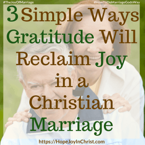 3 Simple Ways Gratitude Will Reclaim Joy in a Christian Marriage sq #Gratitude #Gratitudequotes #Gratitudescripture #attitudeofGratitude 31 Ways to Reclaim Joy in a Christian Marriage #JoyInMarriage #MarriageGodsWay #JoyQuotes #JoyScriptures #ChooseJoy #ChristianMarriage #ChristianMarriagequotes #ChristianMarriageadvice #RelationshipQuotes #marriagegoals #HappyWifeLife #MarriedLife #BiblicalMarriage