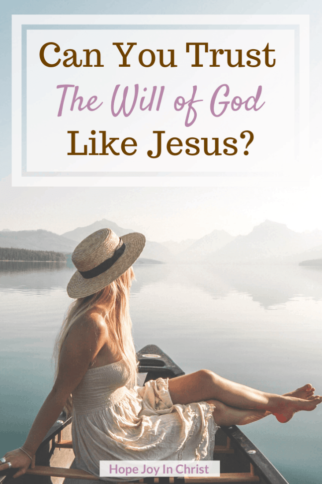 Can You Trust the Will of God Like Jesus, What is the will of God in our lives? How do we do the will of God? What is the will of the Father in Matthew 7:21? Out of the will of God, What is the will of God, Will of God Scriptures, The will of God quotes, The will of God will never take you, The will of God will never lead me where, Trust God #TrustGod #HopeJoyInChrist