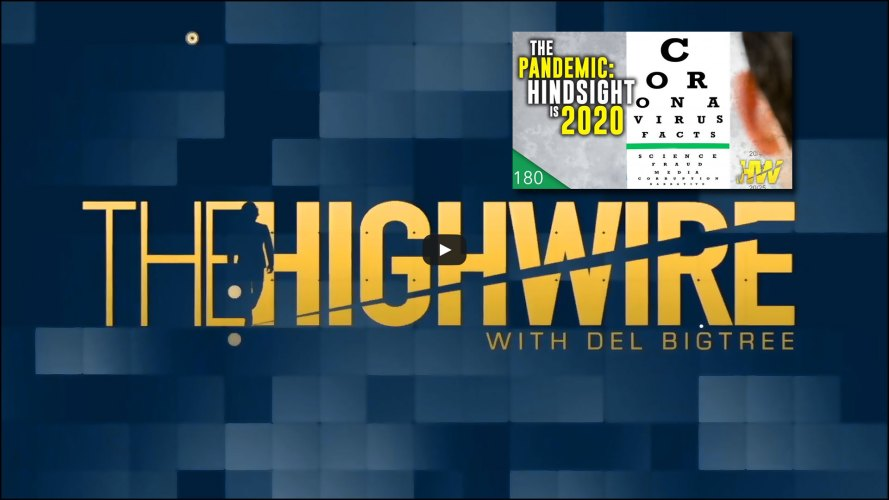 TheHighwire_Covid_Recap_2020_Cover2