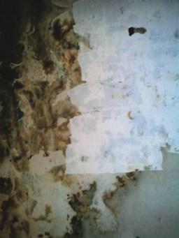 La via Láctea de mi cuarto // The Milky Way of my room