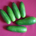 Cucumber 'Crispy Salad'