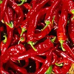 Pepper 'Jimmy Nardello'