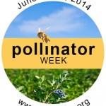 Pollinator Week June 16-22, 2014