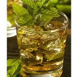 Mint Julep Mint