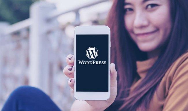 Difficulty Understanding WordPress