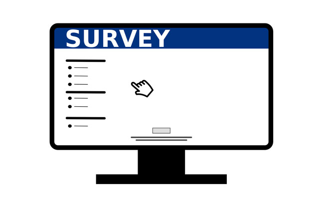 Online Earn from Paid Survey
