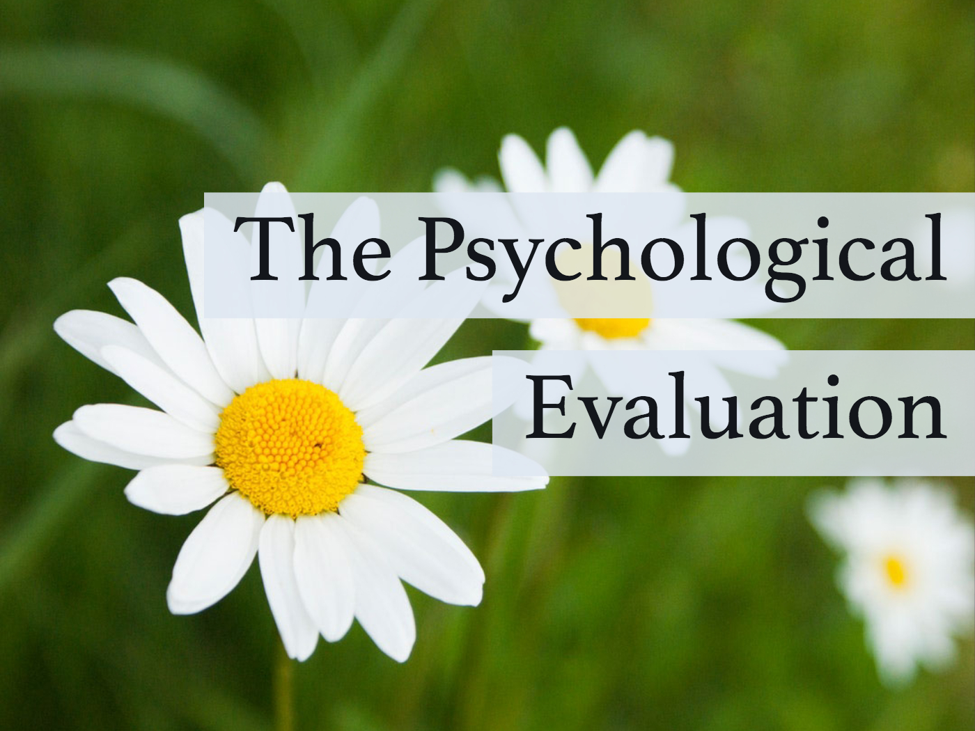 The Psychological Evaluation (And Why It Isn't As Scary As It Sounds)