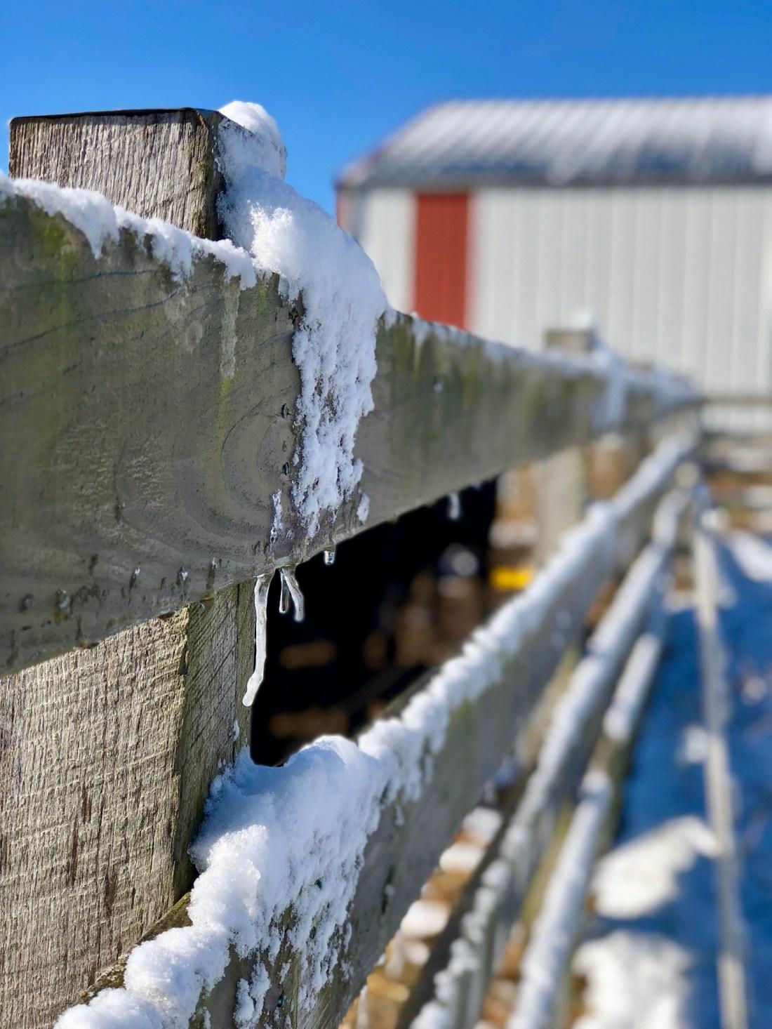 snowy farm fencing
