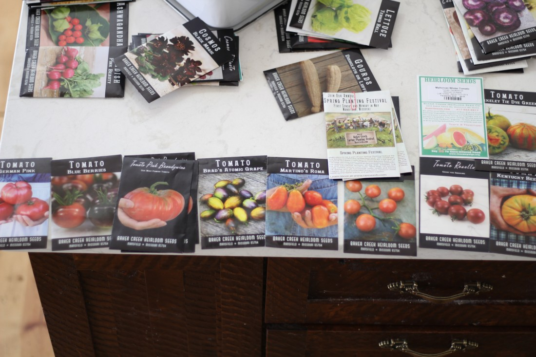 choosing heirloom tomato seeds for the spring permaculture garden