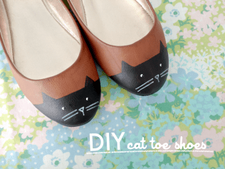 cattoeshoes