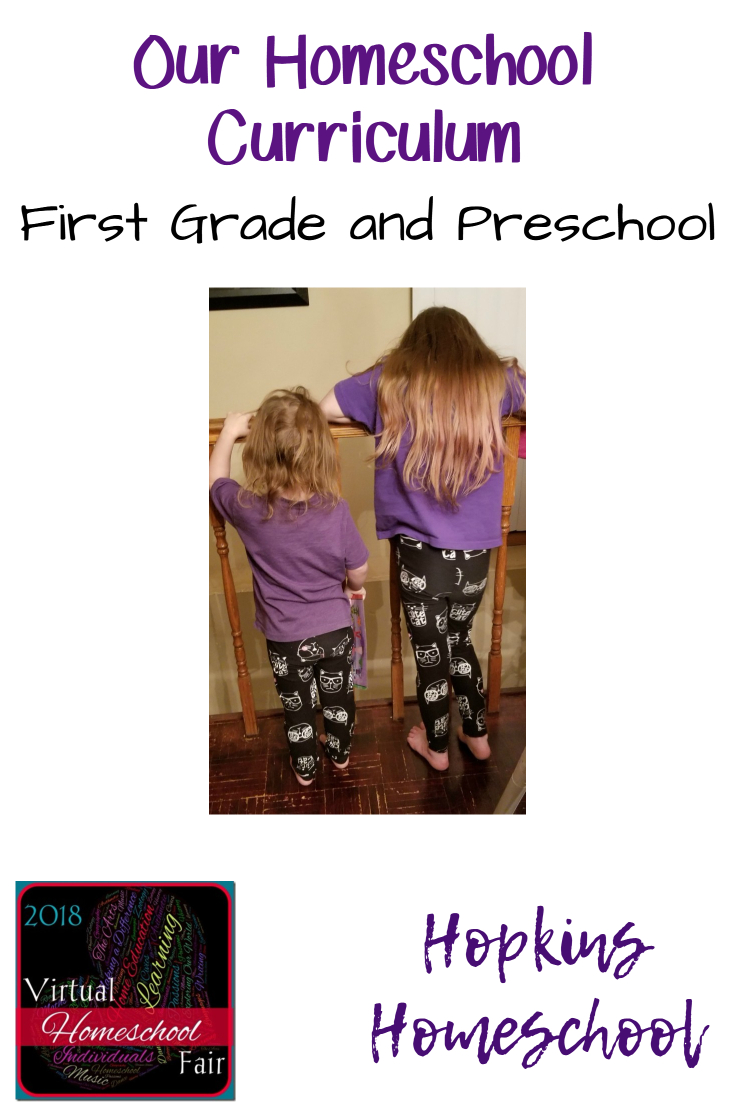 2018 Homeschool Curriculum First Grade And Preschool