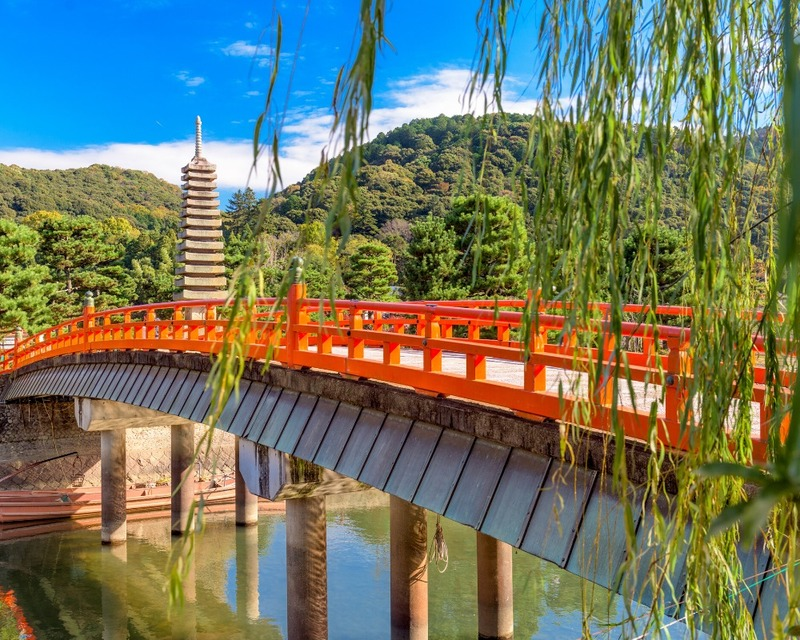 Are you looking to explore the outskirts of Kyoto, Japan?  Here are the most stunning day trips from Kyoto. This list includes all the top spots such as the Bamboo Forest, Nara Deer Park, Kobe, Miyajima, and many other hidden gems.