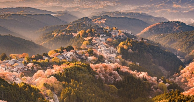 The Best Things to do in Nara One Day Itinerary