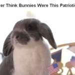 """Did You Ever Think Bunnies Were This Patriotic?"""