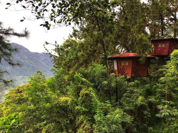 The Tree House, Ginigathena