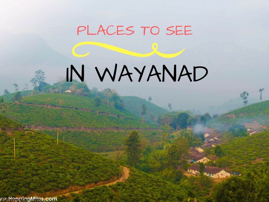 These 5 Mysterious Locations Should Be on Top of Your Travel Schedule for Kerala