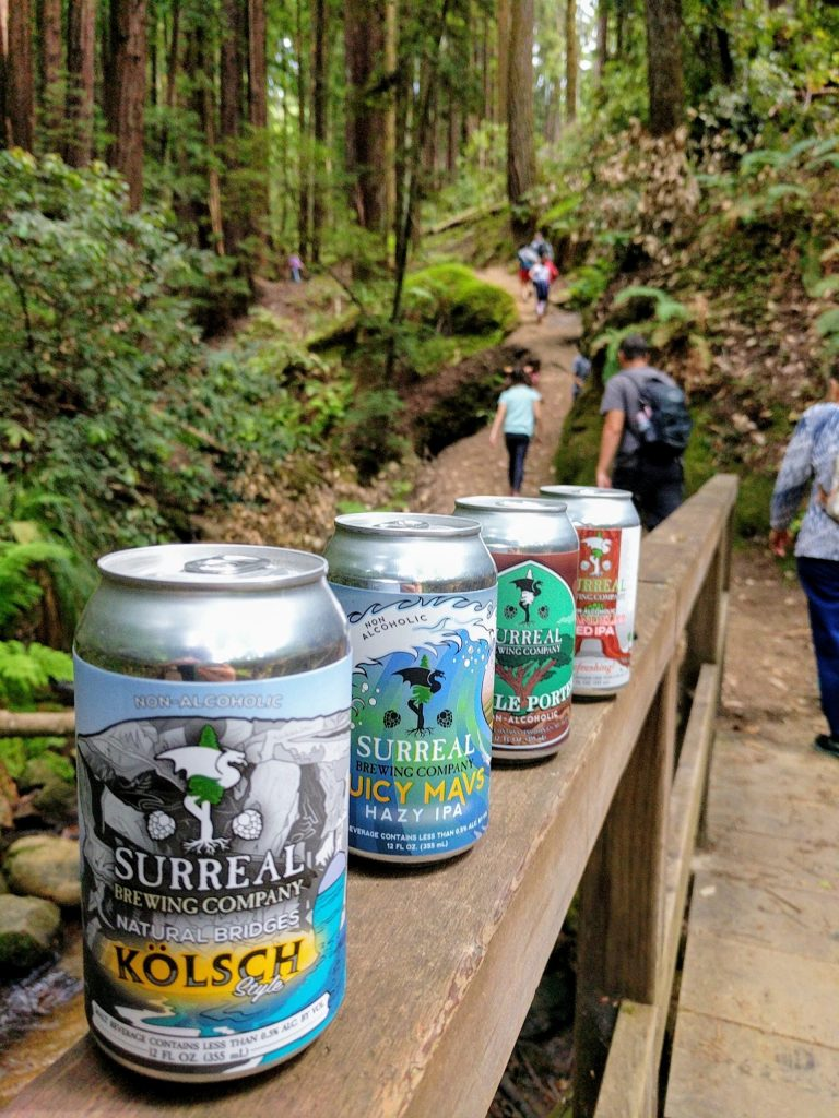 Cans of Surreal beers lined up on a railing on a hiking trail in the forest.