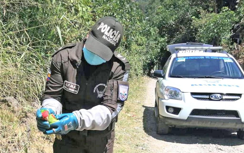 Los controles son a diario en la ciudad y provincia de Loja.