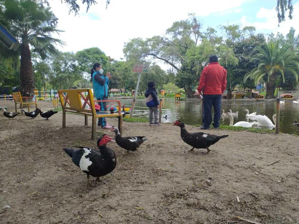 Varias familias visitaron Jipiro y disfrutaron de su ambiente y la fauna.
