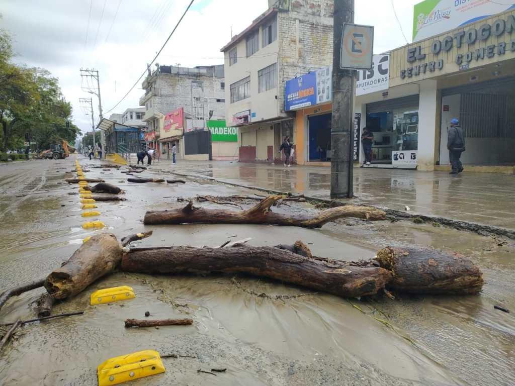 Tras el desbordamiento del río Malacatos, este miércoles 17 de marzo, troncos y otros desechos quedaron regados en la calzada de la avenida Manuel Agustín Aguirre.