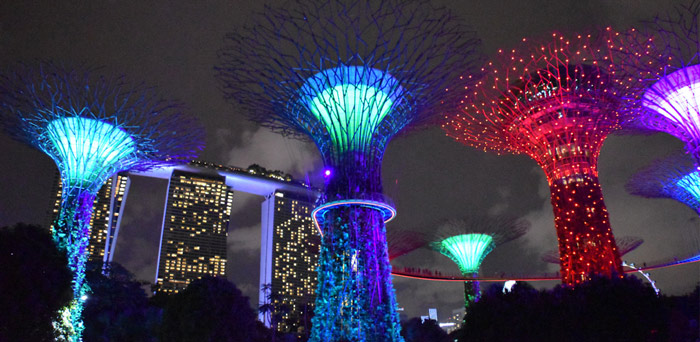 viaje a Singapur gardens by the bay