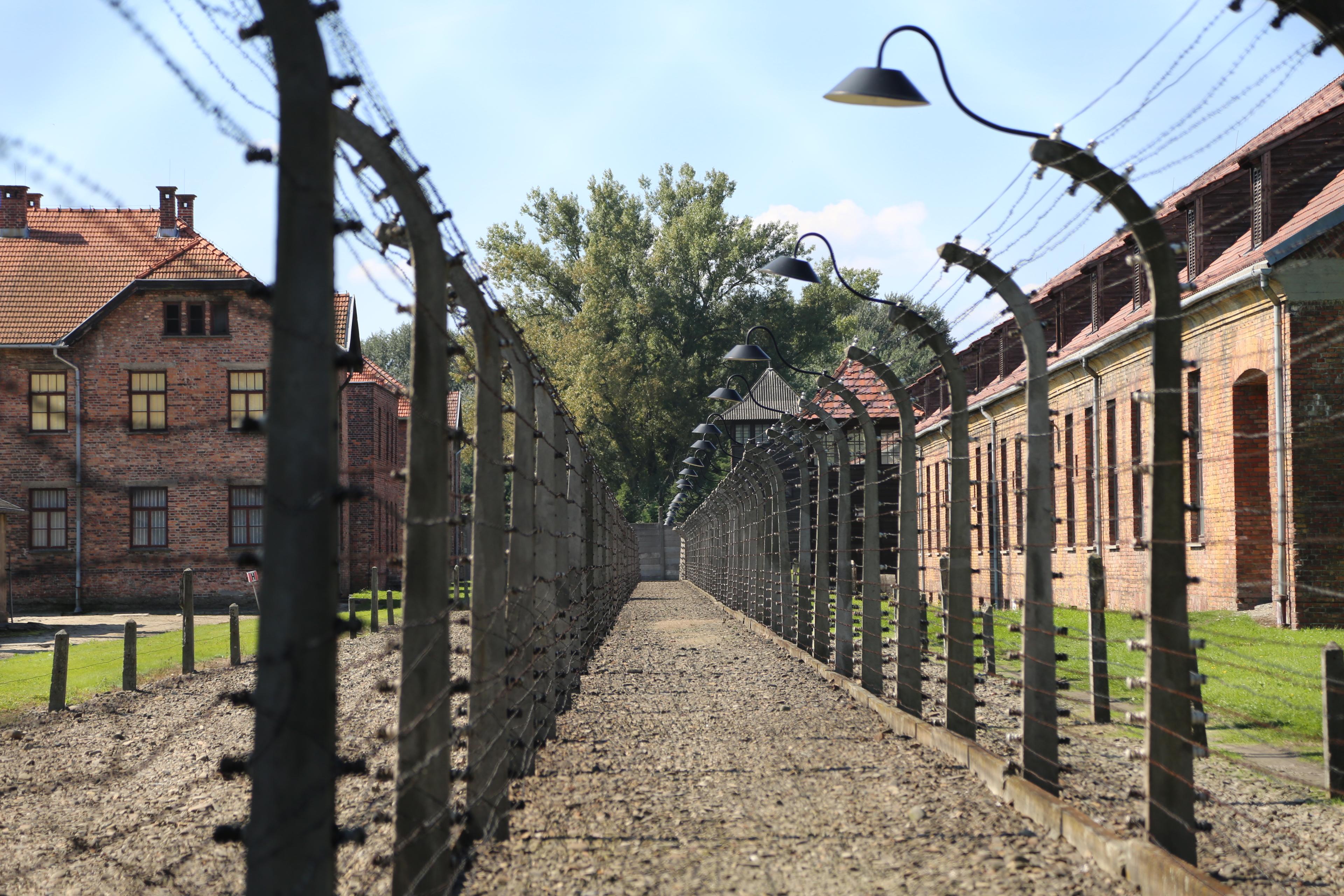 【抗命時代】奧斯威辛集中營 — 頭髮的隨想 | 蔡蔡的空間