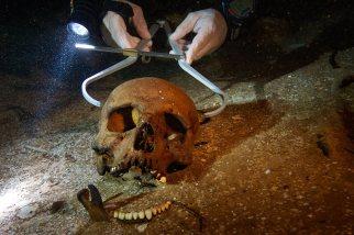 De Anda mide un cráneo en un cenote que contiene los restos de más de 30 individuos. Durante sus inmersiones, el arqueólogo no extrae ningún objeto. paulnicklen.com