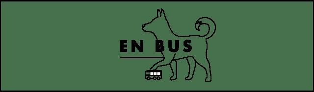 Bus avec un chien