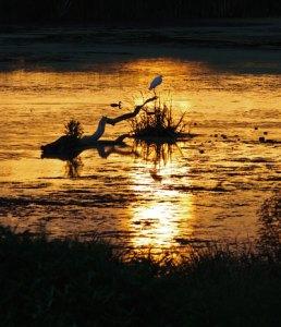 Sunset on the Horicon Marsh