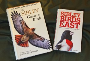 The Sibley Guide to Birds and Sibley Birds East