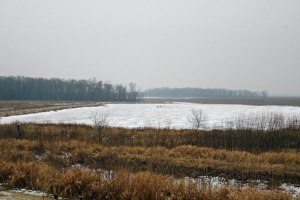 Winter at the Horicon Marsh