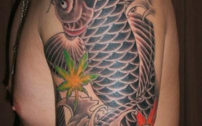 鯉と紅葉のタトゥー画像