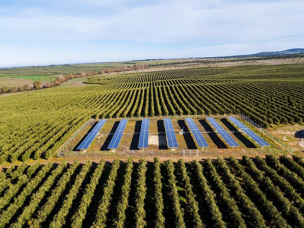 Solar-powered irrigation system