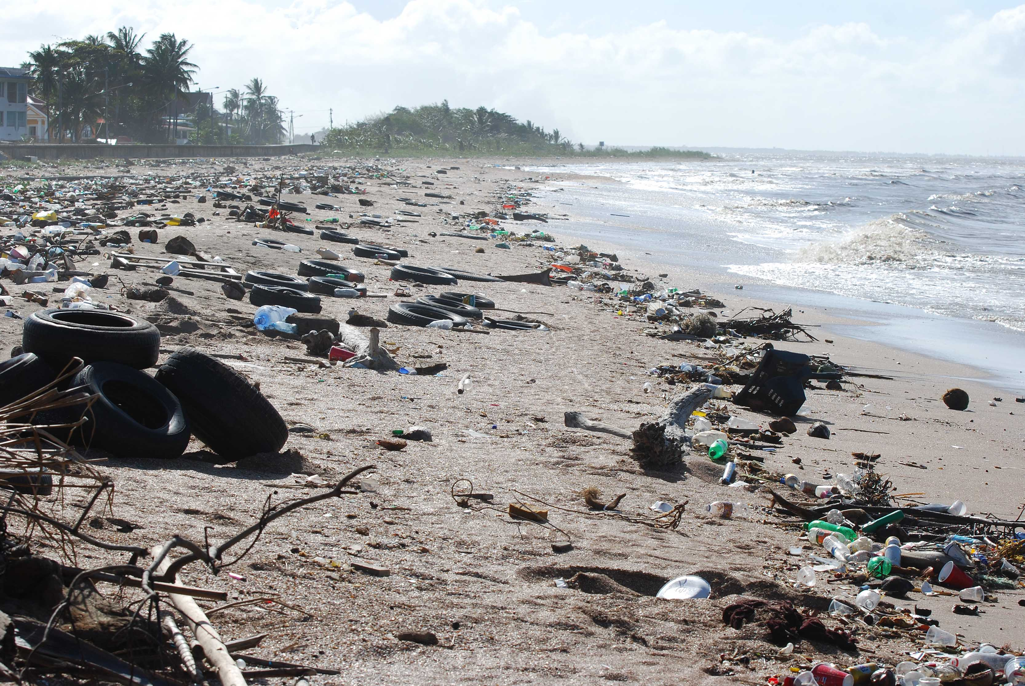 Microplastics are considered the most common form of marine litter.