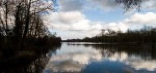 Dryad lake