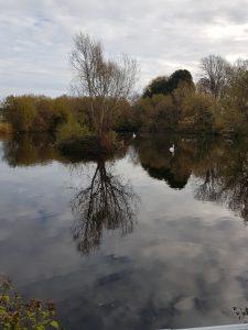 Private Lake 2
