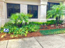Ponte Vedra Office - After Landscaping