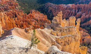 Utah photo tours in bryce canyon. Sunrise location for bryce canyon Photography.