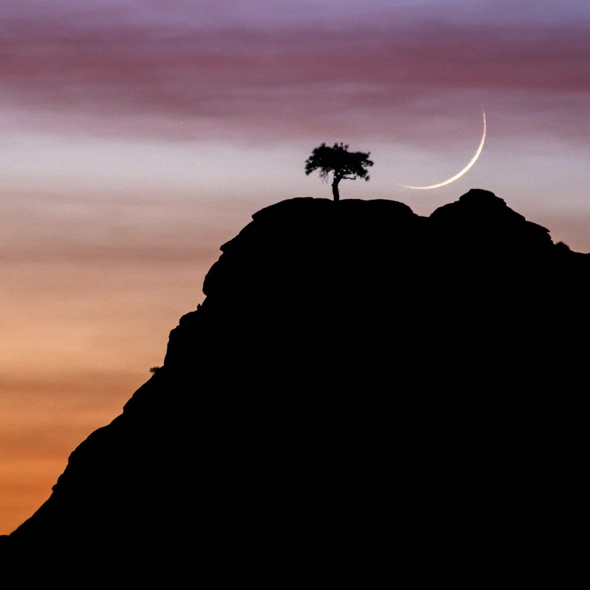 Zion National Park with crescent moon and a lone tree at sunset. Zion photo tours and zion photo workshop.