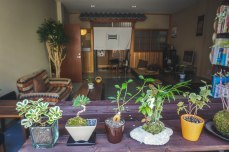 The common area of Suzuki Guesthouse in central Kyoto, highly recommended.