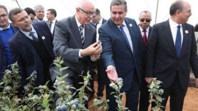 """صورة إطلاق موقع إلكتروني جديد لرصد عشر سنوات من إنجازات """"مخطط المغرب الأخضر"""""""