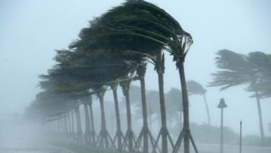 صورة سلطات تارودانت تدعو المواطنين إلى توخي الحذر من الأمطار العاصفية
