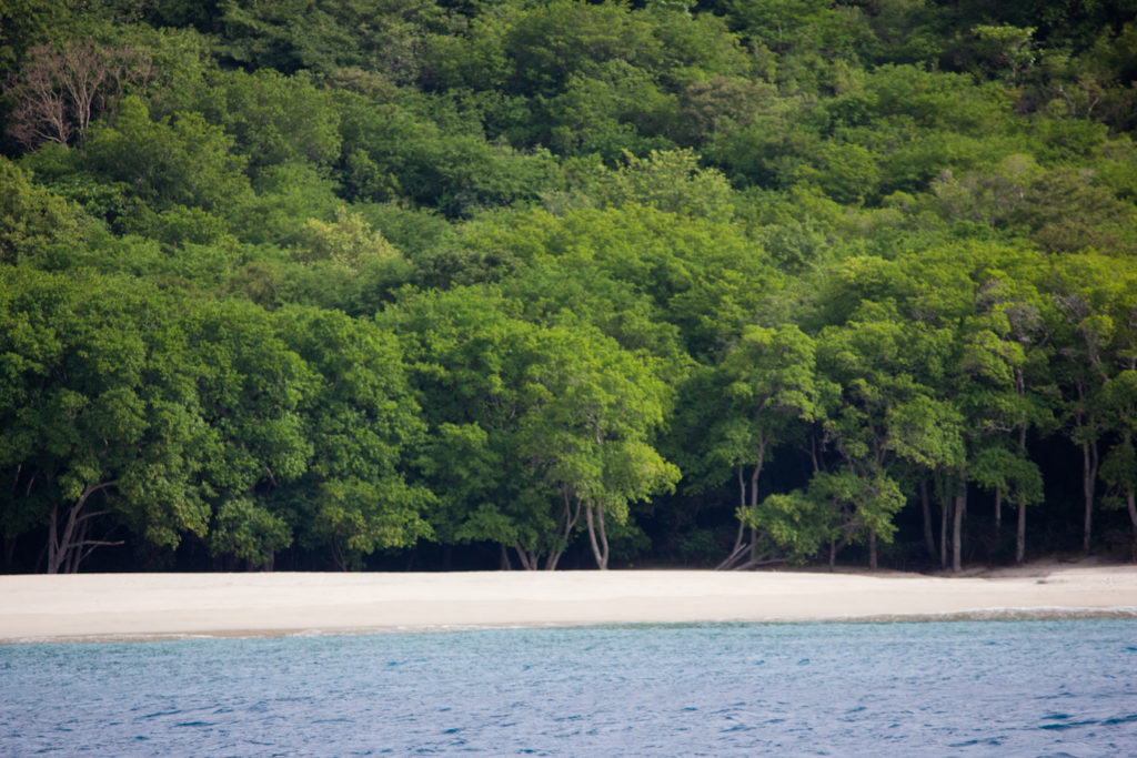 Discover Carriacou In The Grenadines With Horizon Yacht