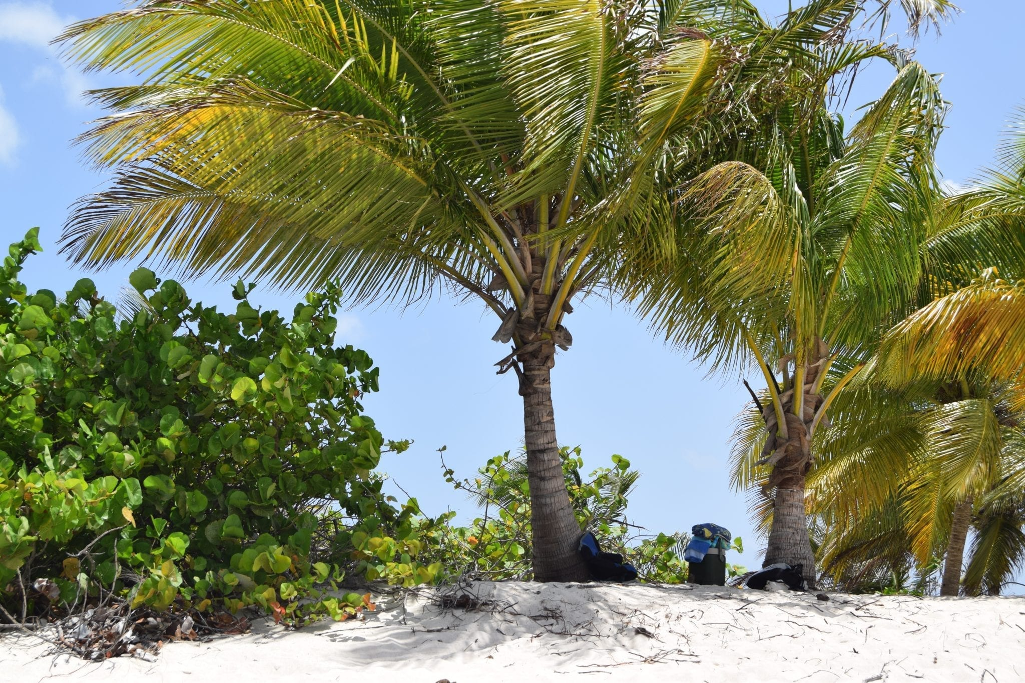 Check Out Carriacou And Especially The Sandy Island Marine