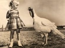 Baltimore News American Photograph Collection