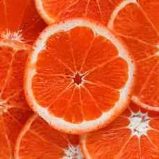 close up photograph of slices orange citrus fruits